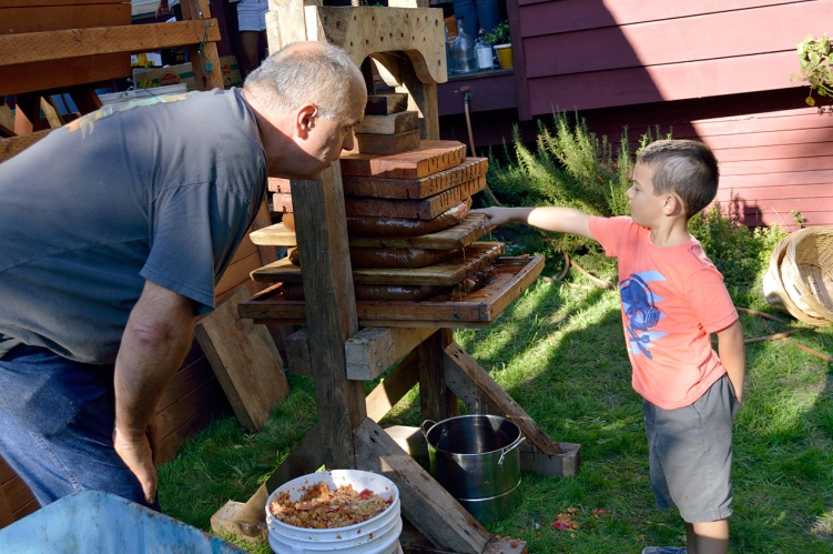 Apple Pressing 2015 Curious Boy