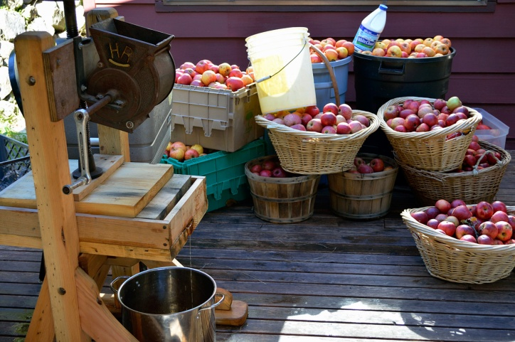 Apple Pressing 2015 Porch of Apples
