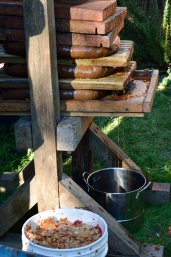 Apple Pressing 2015 Press 1