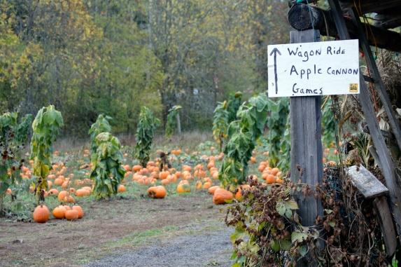 Parkerosa Farms Sign