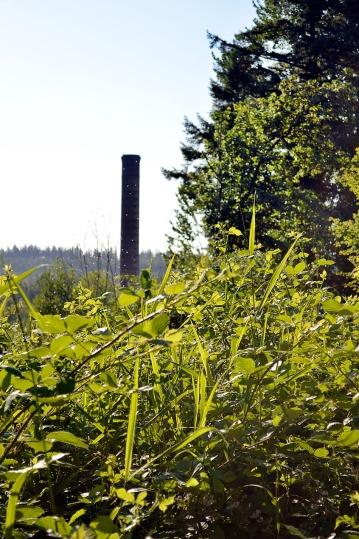 Twin Peaks Josies Mill